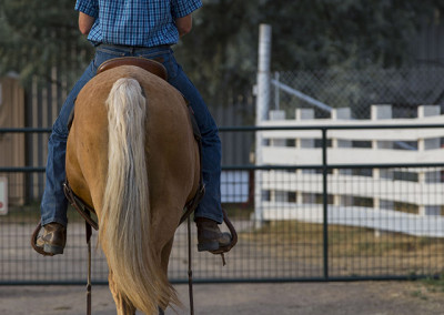 Cody riding Sundance after a work in the round pen