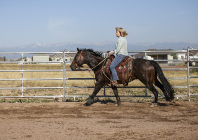 Kathy riding Louie in a lesson